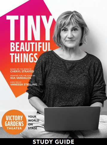 Tiny Beautiful Things Study Guide